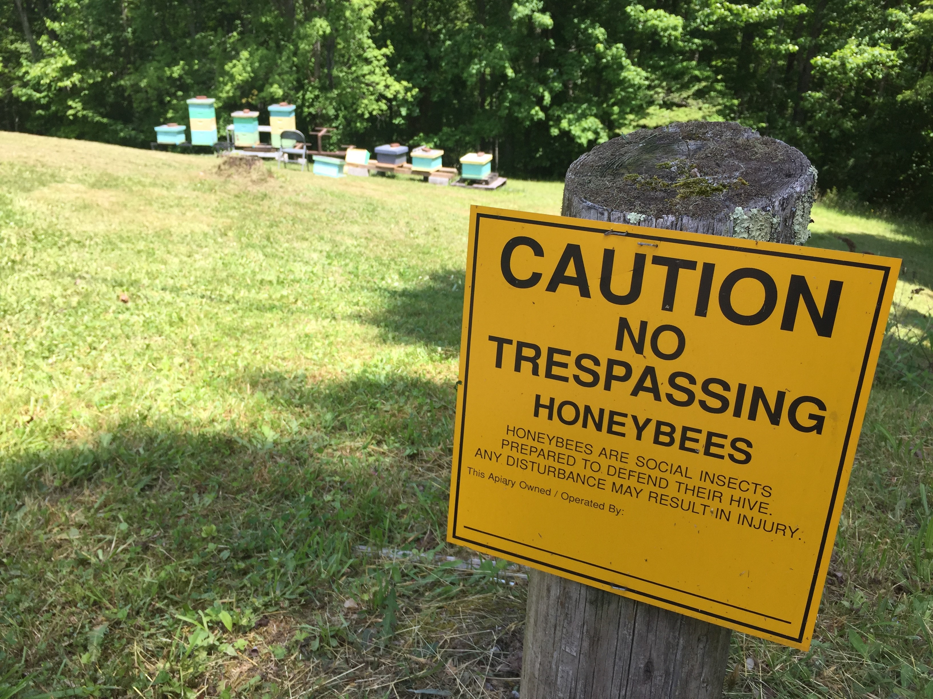 Beekeeping brings extra income to residents of West Virginia.